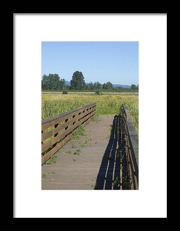 Foot Framed Print featuring the photograph Foot Bridge by Sara Stevenson