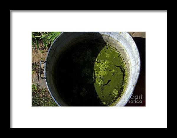 Mash Framed Print featuring the photograph For Dirty Photos  Garden Mash by The Stone Age