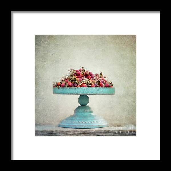 Foraging Framed Print featuring the photograph Foraging by Priska Wettstein