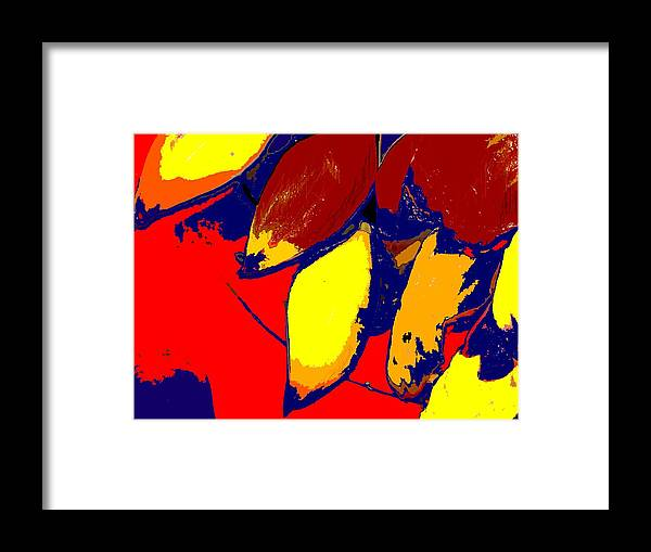 Red Framed Print featuring the photograph Forbidden Fruit by Ian MacDonald