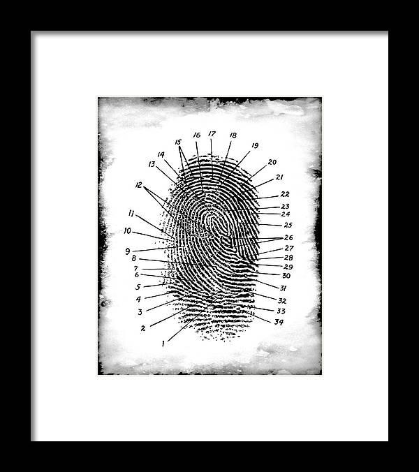 Forensic Fingerprint Framed Print By Daniel Hagerman