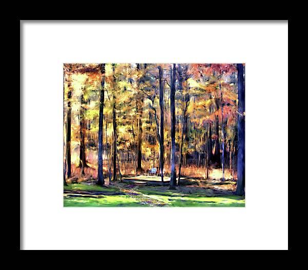 Forest Framed Print featuring the digital art Forest Deck by Shirley Dawson