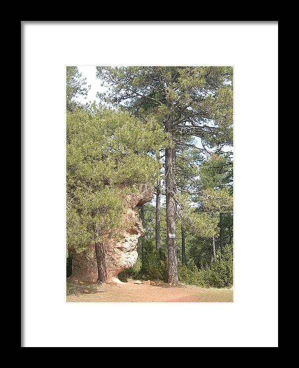 Landscape Framed Print featuring the photograph Forest Face by Valerie Ornstein
