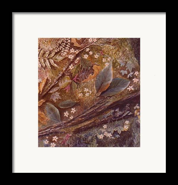 Leaves; Forest; Flowers Framed Print featuring the painting Forest Floor by Ben Kiger