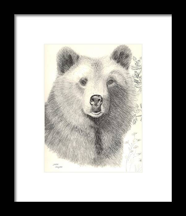 Grizzle Bear Framed Print featuring the drawing Forest Sentry by Joette Snyder