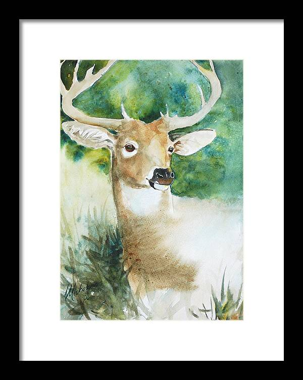 Deer Framed Print featuring the painting Forest Spirit by Christie Michelsen