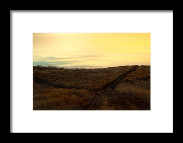 Nature Framed Print featuring the photograph Fork In The Road by Michael Draper