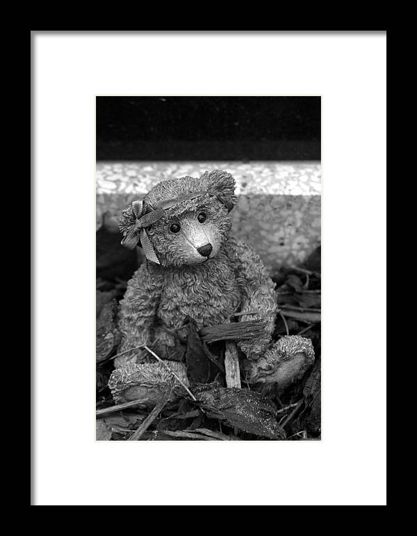 Photographer Framed Print featuring the photograph Forlorn Bear by Jez C Self