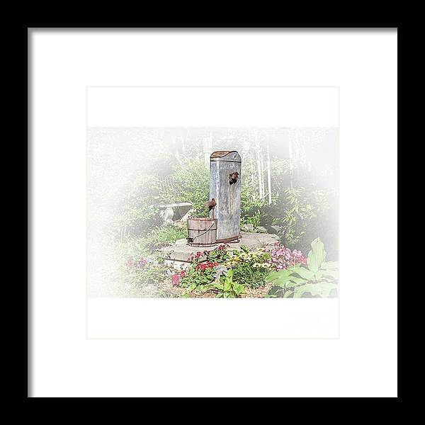 Flowers Framed Print featuring the photograph Fountain Of Flowers elsah Illinois by Larry Braun