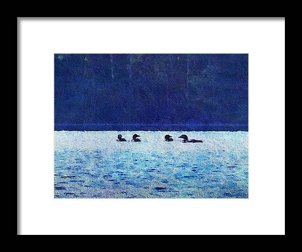 Framed Print featuring the photograph Four Loons On Parker Pond by Joy Nichols
