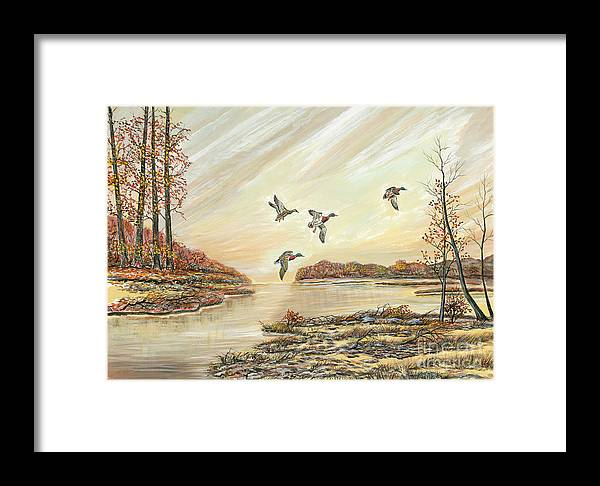 Mallards Framed Print featuring the painting Four Mallards Over Autumn Lake by Samuel Showman