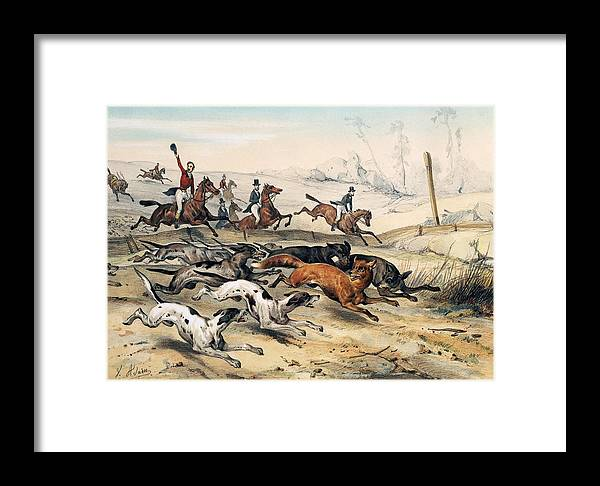 Fox Hunting Framed Print by Jean Victor Adam