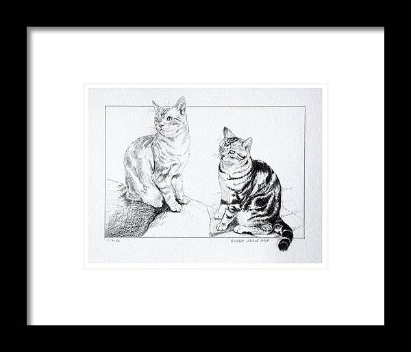 Portrait Framed Print featuring the drawing Fred And Ginger by Eileen Hale