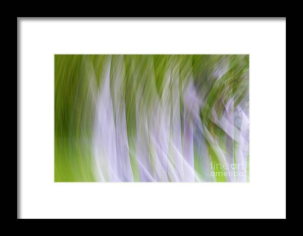 Abstract Framed Print featuring the photograph Free Flow by Darla Bruno