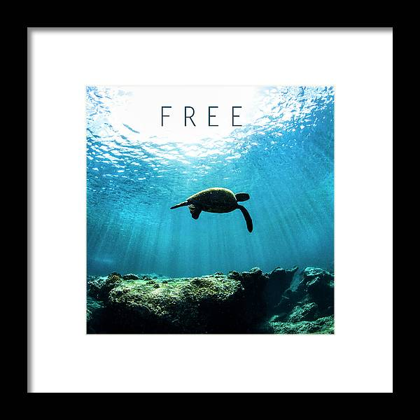 Under Water Framed Print featuring the photograph Free. by Sean Davey
