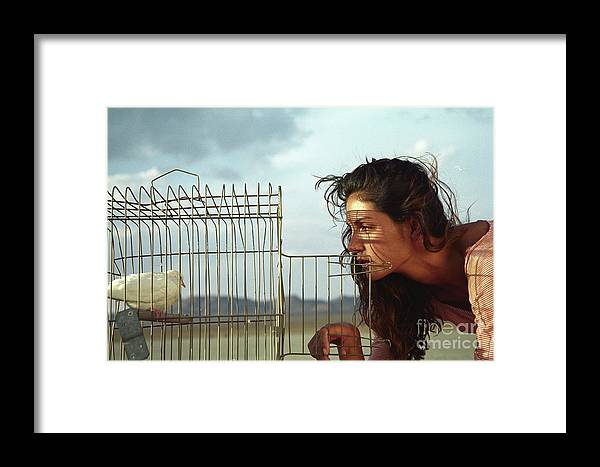 Framed Print featuring the photograph Freedom by David Paul
