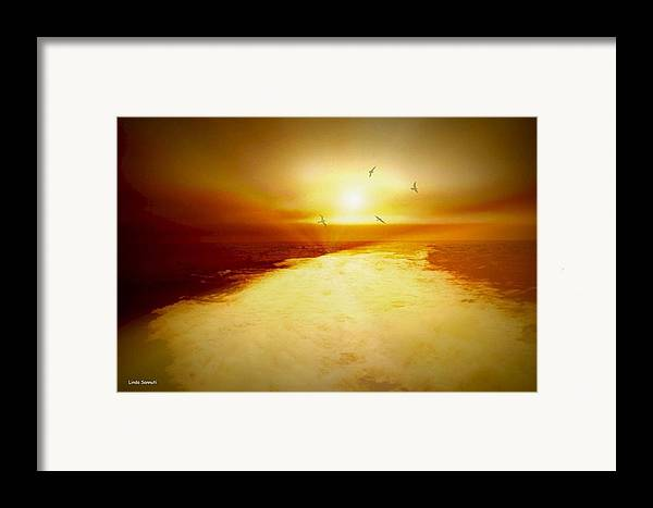 Ocean Framed Print featuring the photograph Freedom Escape by Linda Sannuti
