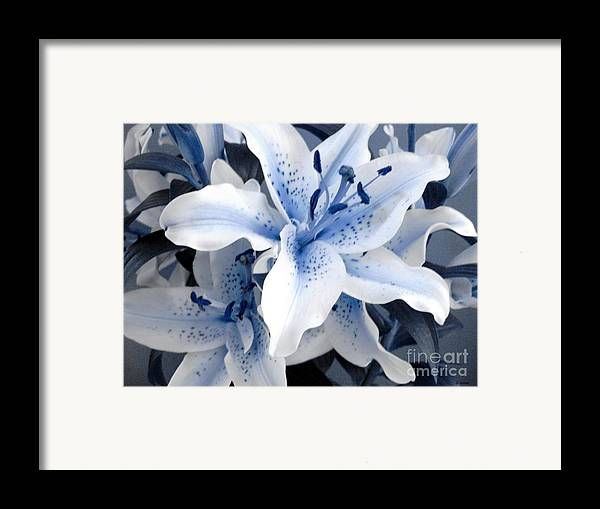 Blue Framed Print featuring the photograph Freeze by Shelley Jones