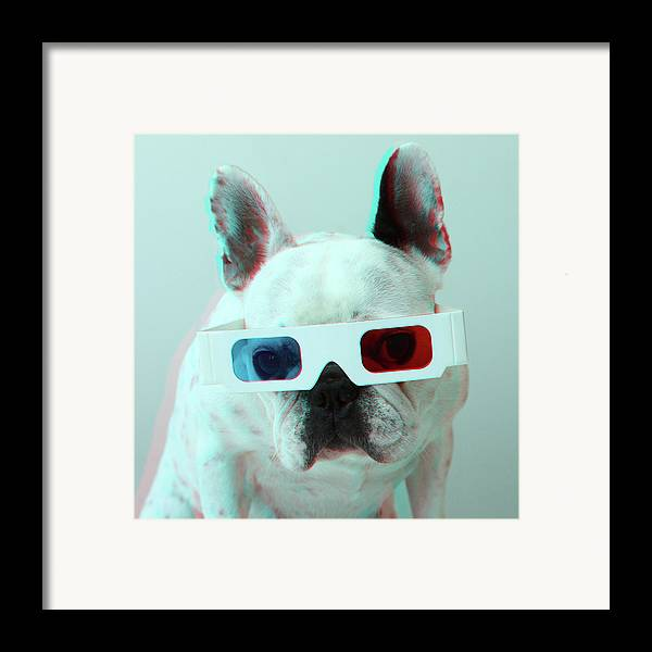 Square Framed Print featuring the photograph French Bulldog With 3d Glasses by Retales Botijero