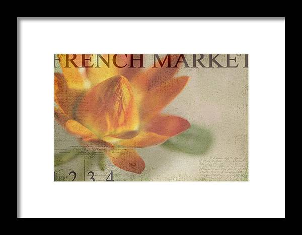 Orange Framed Print featuring the photograph French Market Series J by Rebecca Cozart