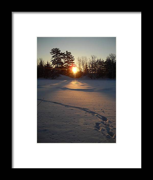 Mississippi River Framed Print featuring the photograph Fresh Deer Tracks At Sunrise by Kent Lorentzen