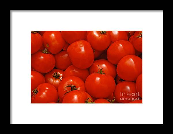 Tomato Framed Print featuring the photograph Fresh Red Tomatoes by Thomas Marchessault