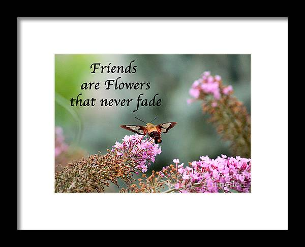 Friends Framed Print featuring the photograph Friends Are Flowers That Never Fade by Kerri Farley