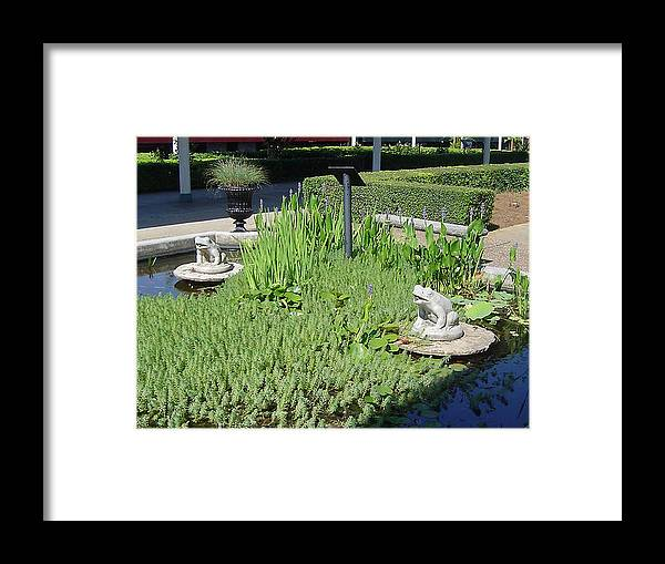 Frogs Framed Print featuring the photograph Friends Forever by Paula Ferguson