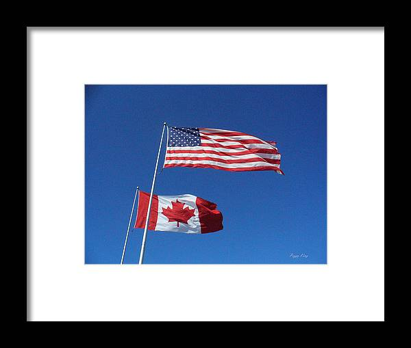 Flags Framed Print featuring the photograph Friends by Peggy King