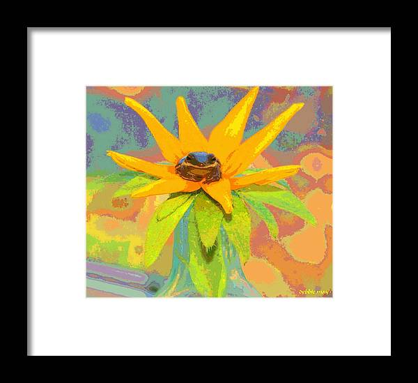 Frog Framed Print featuring the photograph Frog A Lilly 2 - Photos Bydebbiemay by Debbie May