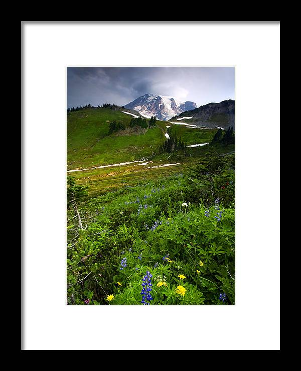Rainier Framed Print featuring the photograph From The Top by Mike Dawson