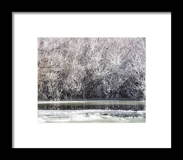 Frozen Framed Print featuring the photograph Frozen by LeAnne Perry