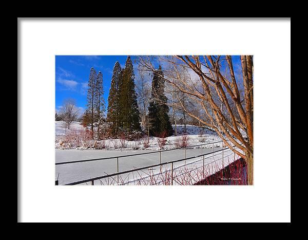 Frozen Pond Framed Print featuring the digital art Frozen Pond / Chicago Botanic Garden by Vickie Courville