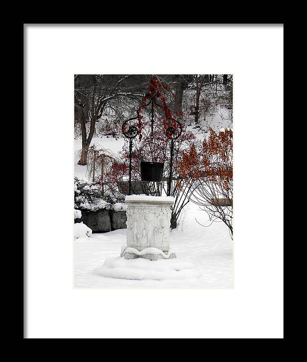 Winter Snow Well Wishing Red Berries Canton Framed Print featuring the photograph Frozen Wishes by Mindy Roth