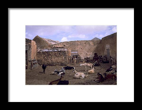 Fuerteventura Framed Print featuring the photograph Fuerteventura IIi by Flavia Westerwelle