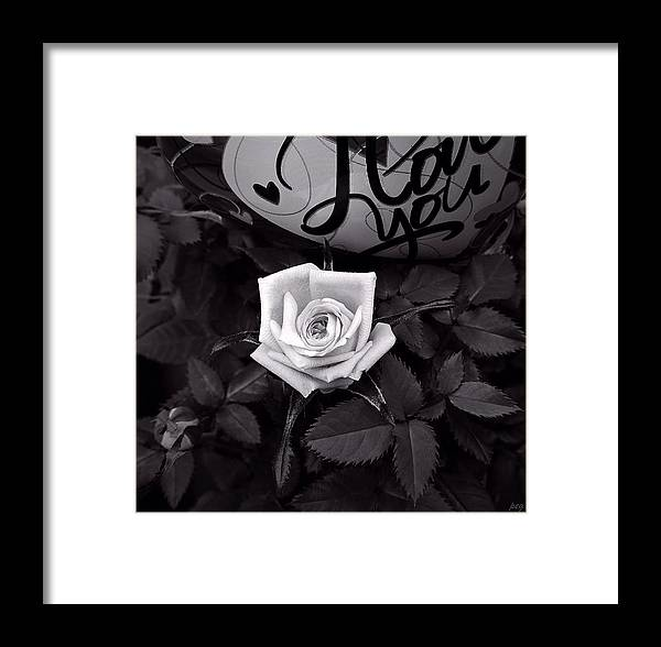 Valentine's Day Framed Print featuring the photograph Full Blown Love by Peg Donnellan