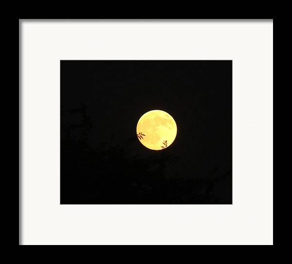 Full Moon Framed Print featuring the photograph Full Moon August 2008 by Liz Vernand