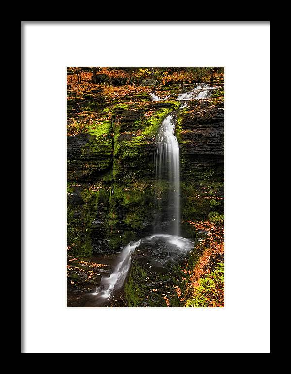 Childs Park Framed Print featuring the photograph Fulmer Falls George W.childs Park by Susan Candelario
