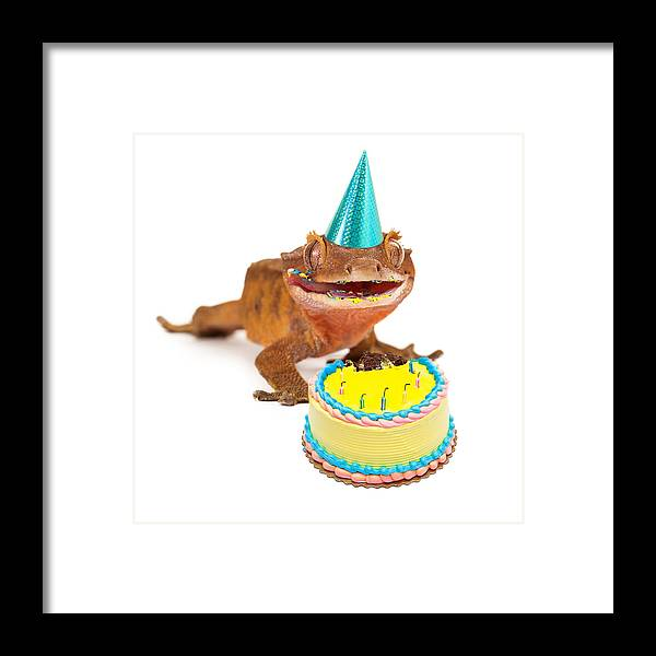 Animal Framed Print Featuring The Photograph Funny Gecko Lizard Eating Birthday Cake By Susan Schmitz