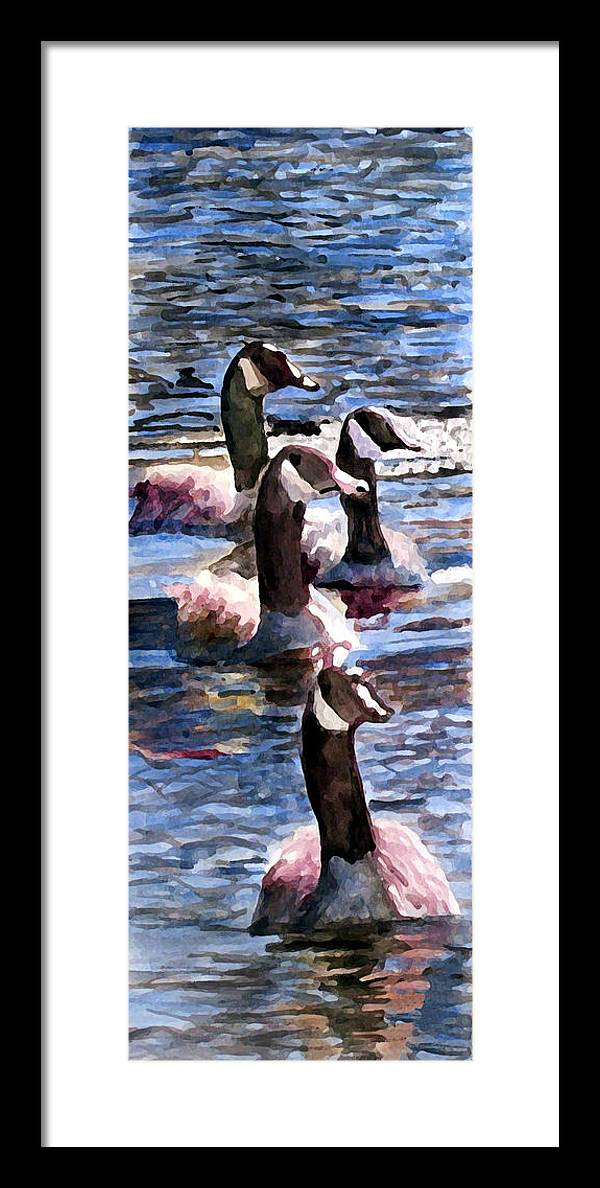 Geese Framed Print featuring the painting Gaggle Of Geese by Jim Phillips