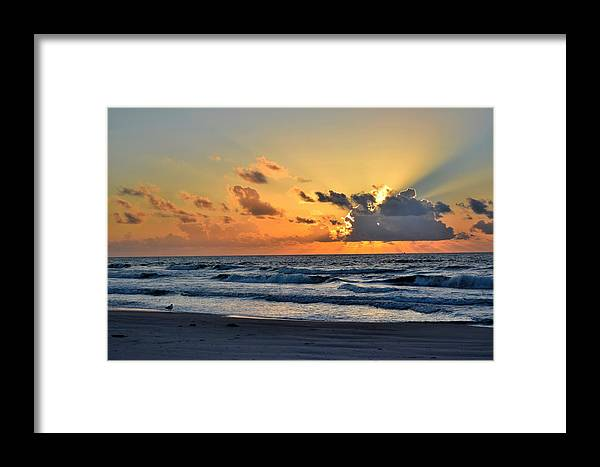 Galveston Framed Print featuring the photograph Galveston Tx 338 by Lawrence Hess