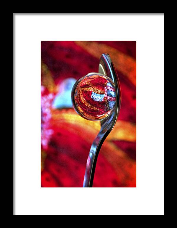 Ball Framed Print featuring the photograph Ganesh Spoon by Skip Hunt