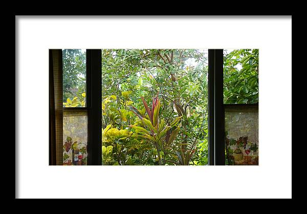Garden Framed Print featuring the photograph Garden Escape by Kevin Smith