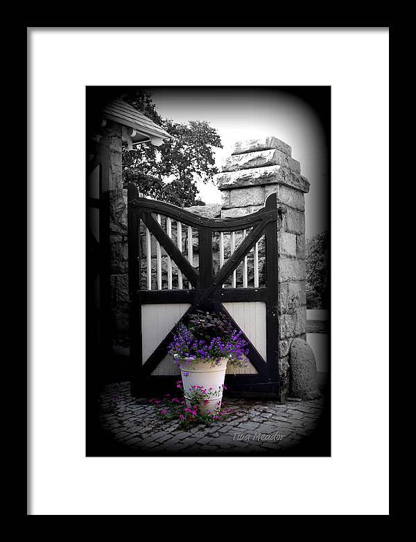 Gate Framed Print featuring the photograph Garden Gate by Tina Meador
