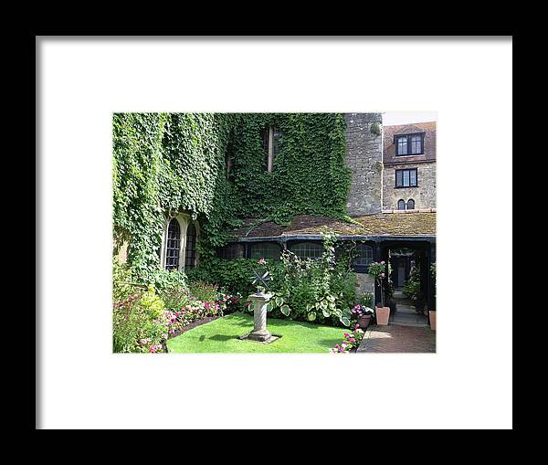 Photograph Framed Print featuring the photograph Garden Globe by Nicole Parks