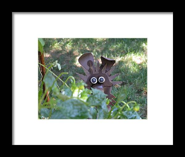 Nature Framed Print featuring the photograph Garden Peek-a-boo by William Thomas