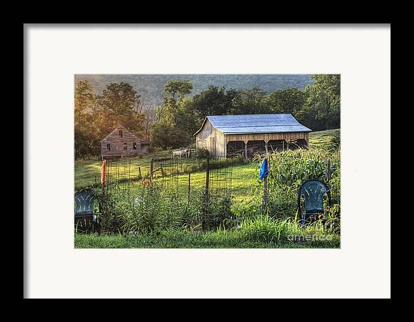 Garden Framed Print featuring the photograph Garden View by Pete Hellmann
