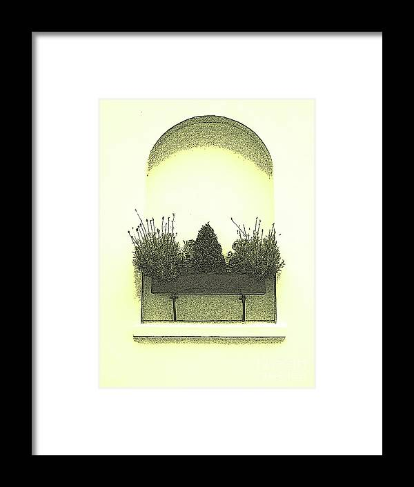 Garden Framed Print featuring the photograph Garden Wall Box by Karen Lewis