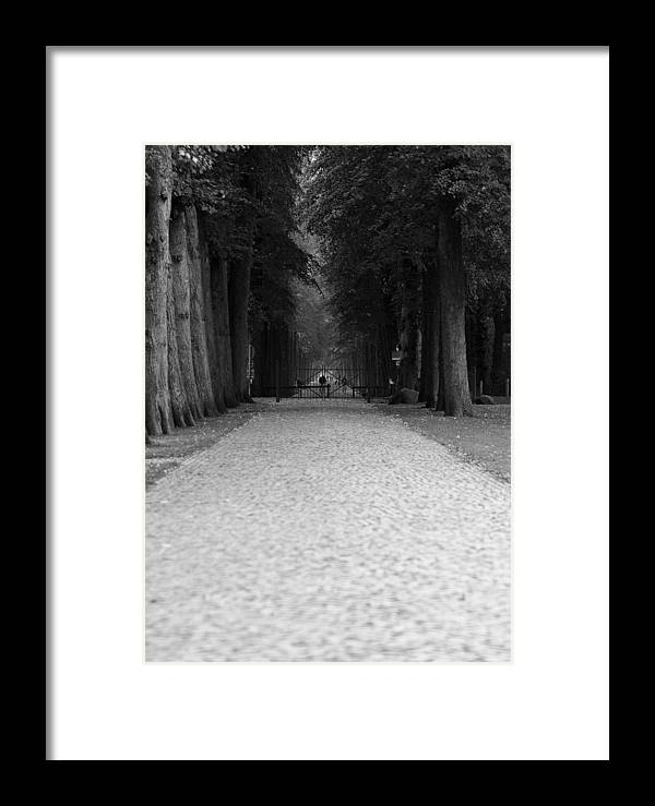 Park Framed Print featuring the photograph Gated Path by Edward Myers