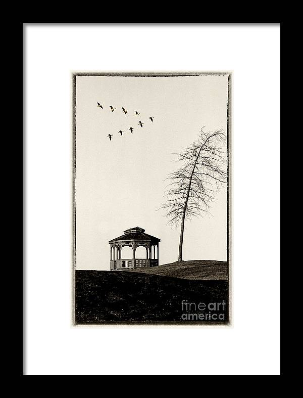 Gazebo Framed Print featuring the photograph Gazebo And Geese by Mike Nellums